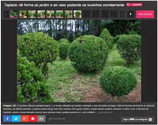 http://mulher.uol.com.br/casa-e-decoracao/album/2015/05/16/topiaria-de-forma-ao-jardim-e-ao-vaso-podando-os-buxinhos-corretamente.htm