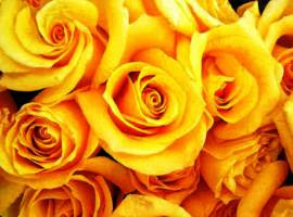 flowers yellow roses bouquet 01
