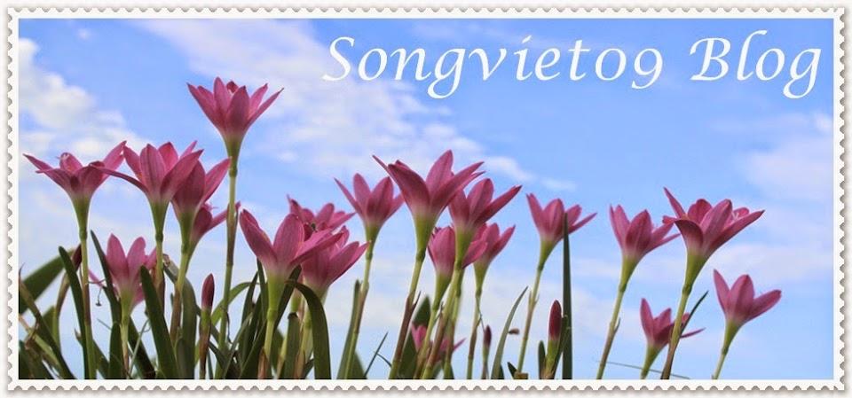songviet09 blog