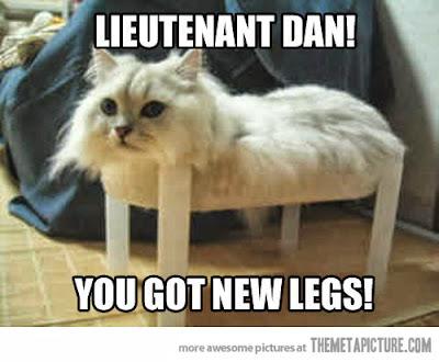 Really Funny Cats