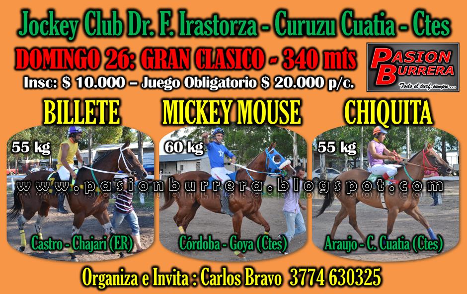 CURUZU CUATIA 26 - 340