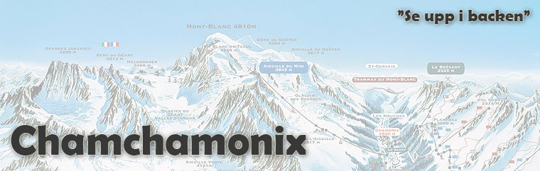 Chamchamonix