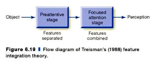 feature integration theory Lations required to test the feature integration theory and the ones  level of illusory conjunctions thus, the theory is inconsistent with the evidence,.
