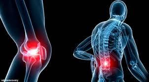 Obat Herbal Untuk Penyakit Rematik Tulang