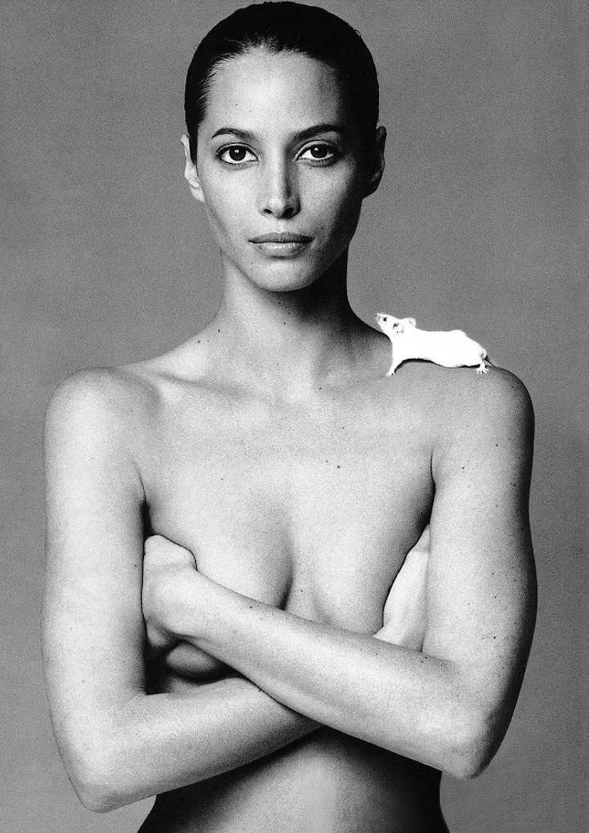 Christy Turlington with mouse photographed by Patrick Demarchelier for Vogue 1999 / via fashioned by love british fashion blog