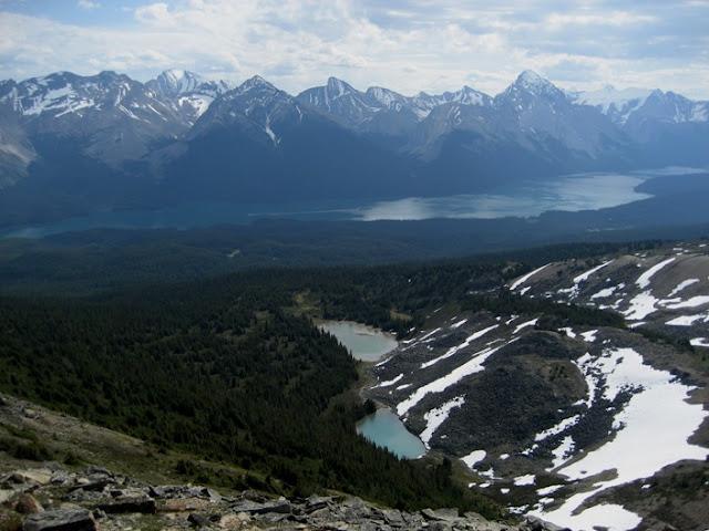 Parque Nacional Jasper   Bald Hills