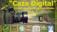 """Caza Digital"""