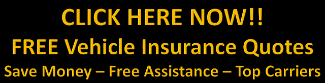FREE Vehicle Insurance Quotes and FREE Agent Assistance - Car Insurance - Truck Insurance - SR22 Insurance