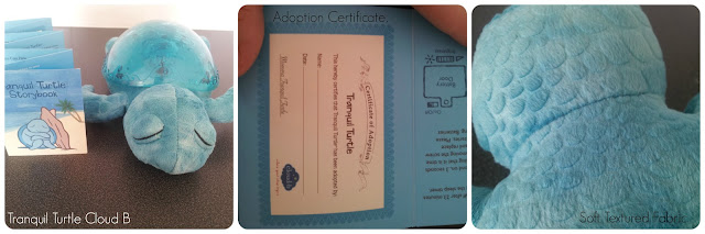 Cloud B Tranquil Turtle with Adoption Certificate