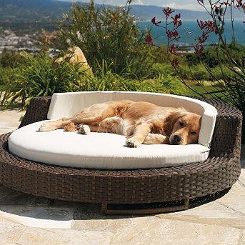 Natural Dog Beds Talalay Latex Bolster