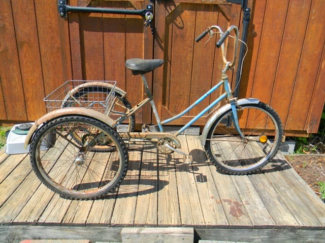 Wileys Vintage Bikes  AMF Roadmaster 3 Wheel Bike