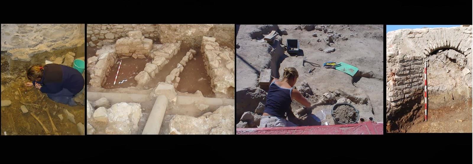 Arqueología profesional