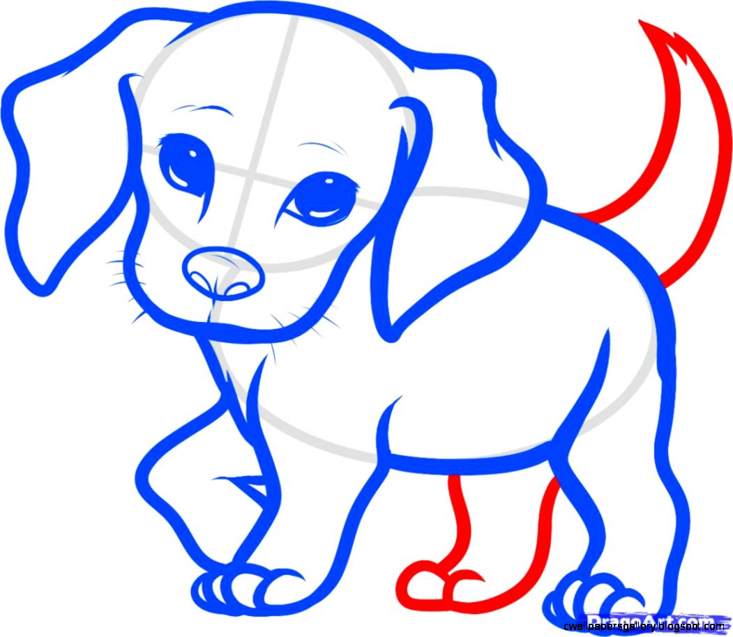 HOW TO DRAW DOGS AND PUPPIES  How to Draw