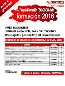 Plan de Formación 2016