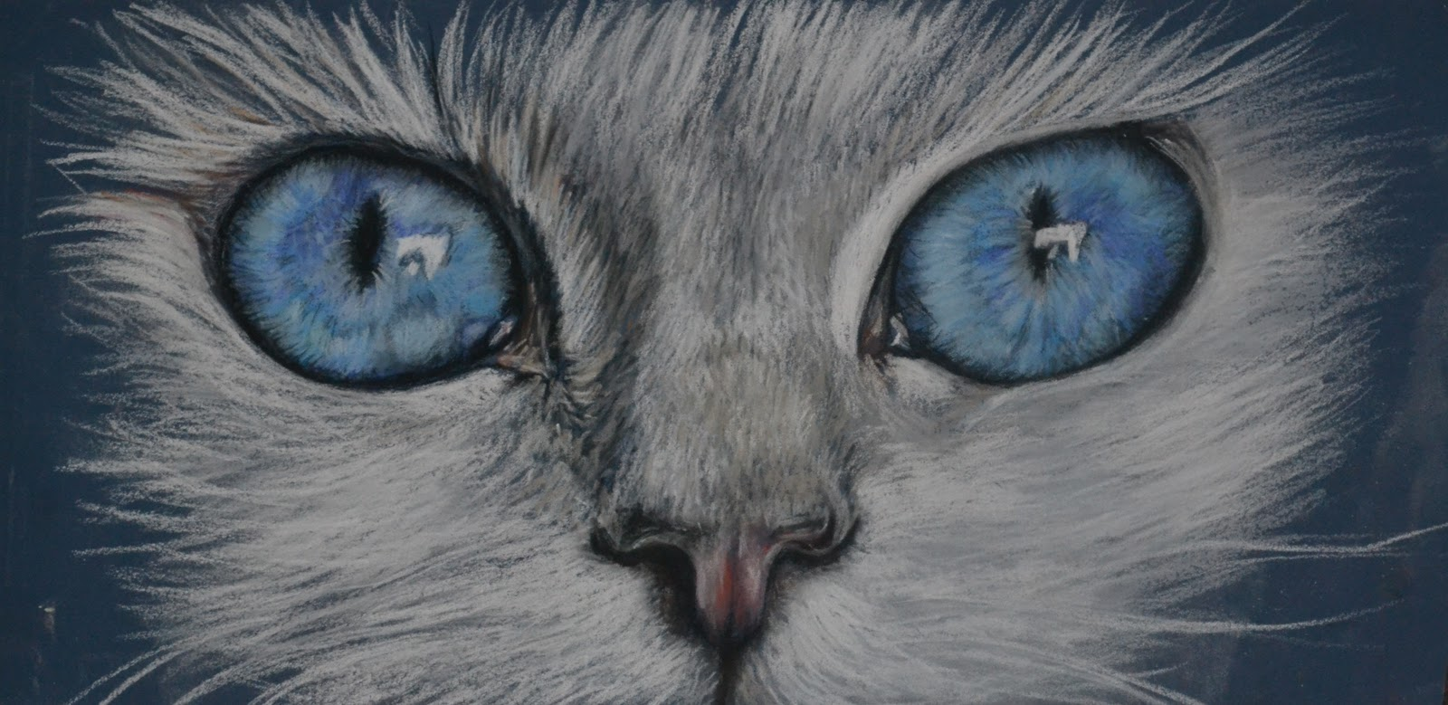 Cat Eyes Drawing Best Value