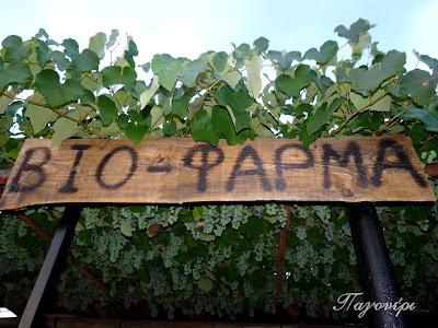 βιοφάρμα-Παγονέρι-ζώα σε φάρμα-pagoneri-ημιάγριοι χοίροι