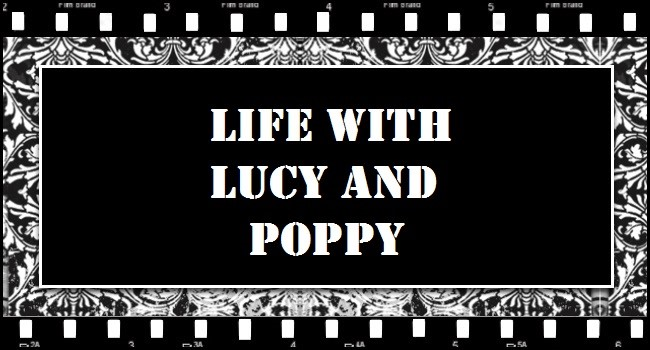 Life with Lucy & Poppy