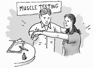 Skala Kekuatan Otot
