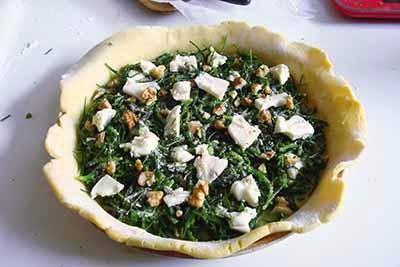Torta salata agretti e gorgonzola 15