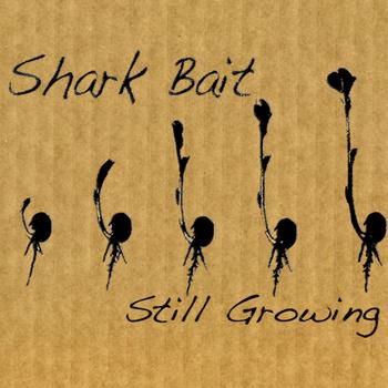 http://3.bp.blogspot.com/-huf7hfOMLtE/TVyJhOjDtbI/AAAAAAAAAOo/7IDfSEjMnL8/s1600/sharkbait.jpg