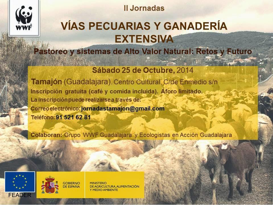 II Jornadas sobre Vías Pecuarias de Guadalajara en Tamajón