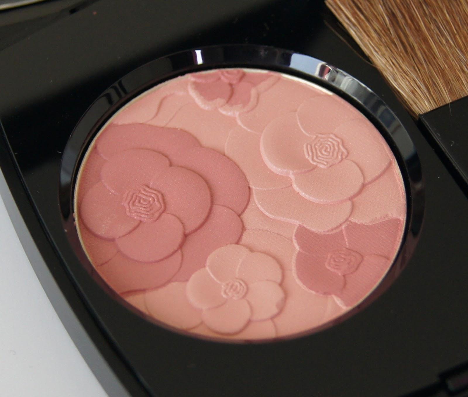blush camelia rose review