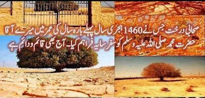 Pics Hazrat Muhammad Pbuh House