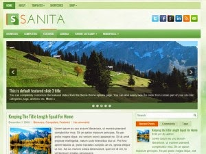 Sanita - Free Wordpress Theme