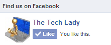 Like The Tech Lady on Facebook