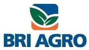 Bank BRI Agro - Recruitment Semua Jurusan