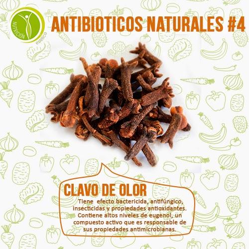 Nutricion Estetica: Antibióticos naturales para tratar