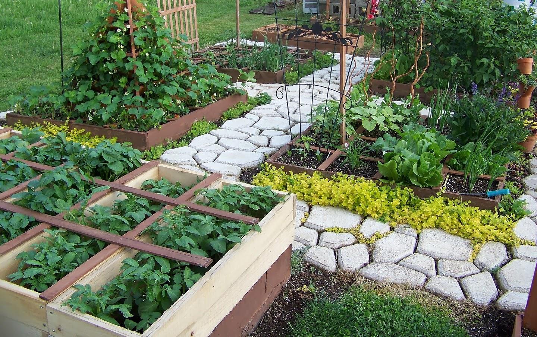 Como cultivar en 1 m2 el balcon verde for Hacer un huerto en el jardin