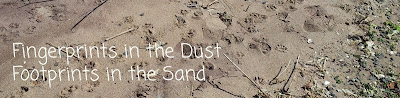 fingerprints in the dust