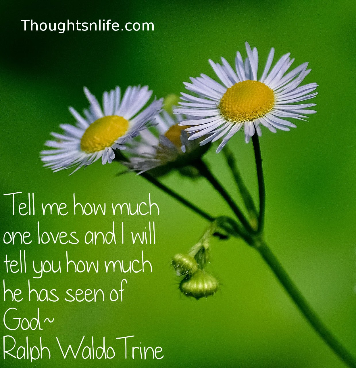 Thoughtsnlife.com: Tell me how much one loves and I will tell you how much he has seen of God. Ralph Waldo Trine