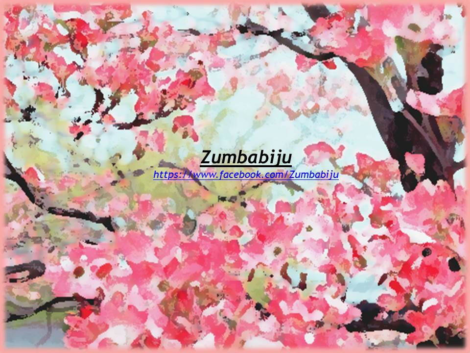 Zumbabiju