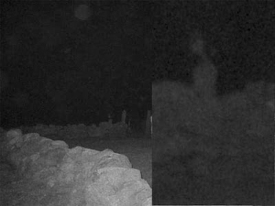Real Ghost Photo: Full Body Appartition
