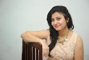 vaishali patel latest glamorous photos-thumbnail-2