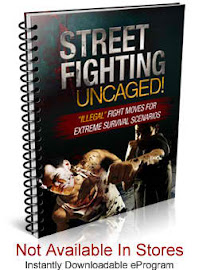 Learn The Art of Street Fighting