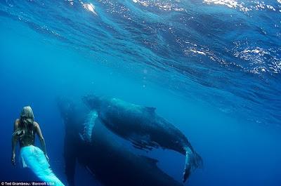 Fotos de Sirenas 1