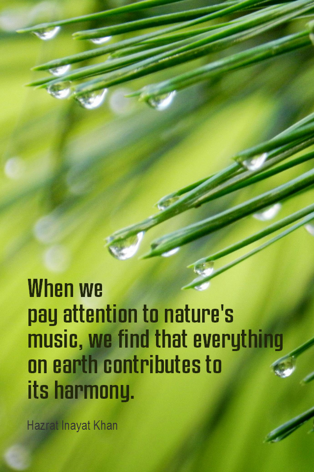 visual quote - image quotation for AWARENESS - When we pay attention to nature's music, we find that everything on earth contributes to its harmony. - Hazrat Inayat Khan
