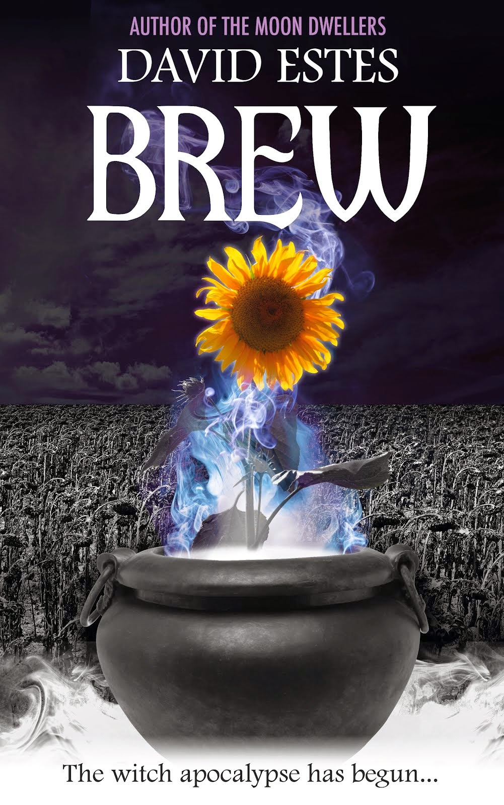 BREW Cover Reveal