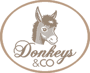 Donkeys & CO