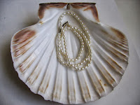 Pearls in Seashell Oyster Shell
