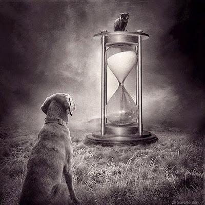 Imagen artística de un perro sentado esperando a un gato montado encima de un gran reloj de arena colocado en una pradera.