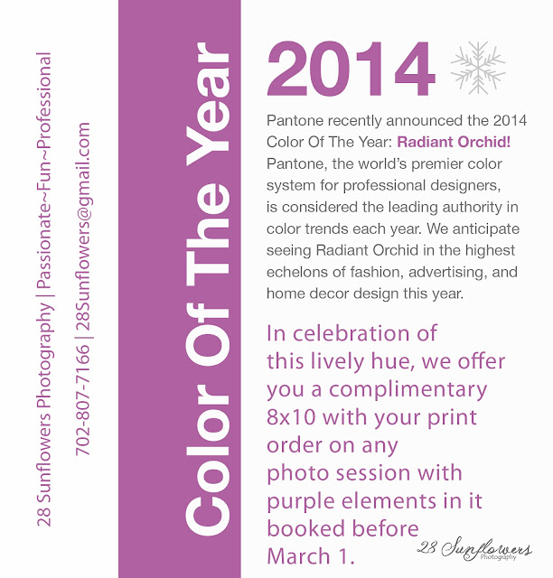 Pantone Color Of The Year 2014 | Boulder City Photographer | Las Vegas ...