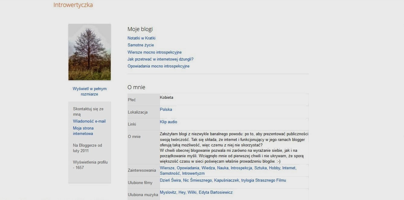 Profil na bloggerze
