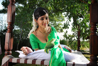 Actress Neelam Upadyaya Latest  Pictures in Green Saree  0010.jpg