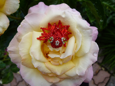 Red fish perched in a rose