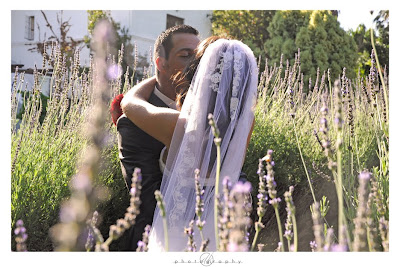 DK Photography AA18 Anne-Marie & Alexander's Wedding in Riverside Estates in Hout Bay  Cape Town Wedding photographer