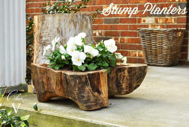 15 Amazing Tree Stump to Planter Conversions - Garden Lovers Club